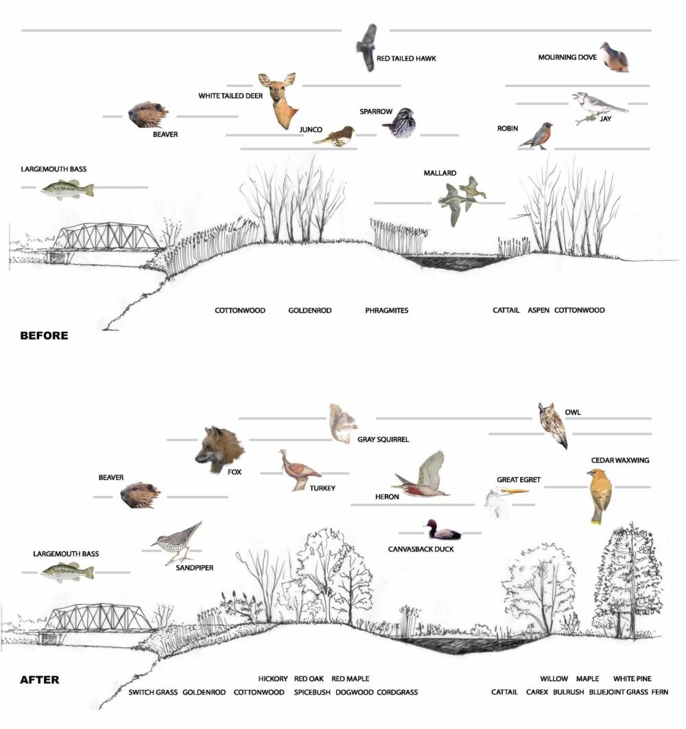 CLMT-SECT-KO-cal-Habitat-sections