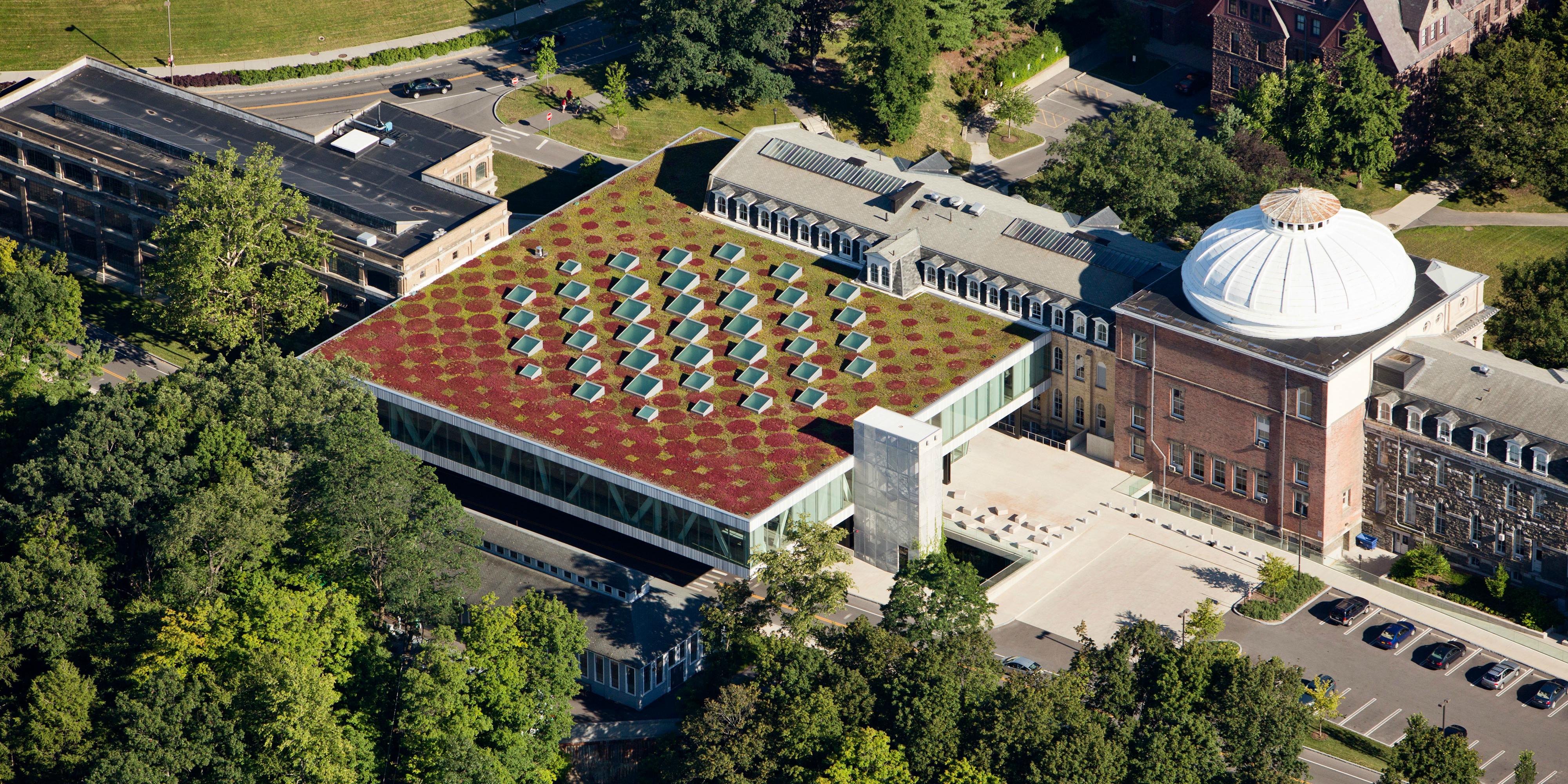Cornell University Milstein Hall Scape
