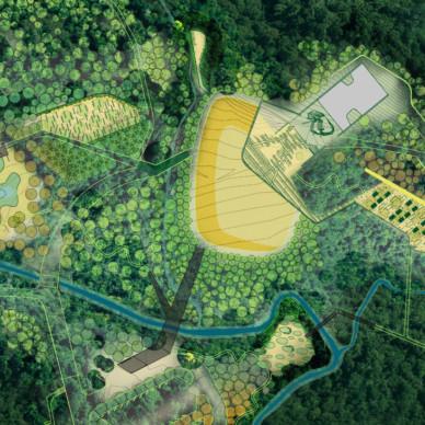 Plan-Base_Forest2_WEB_CROP