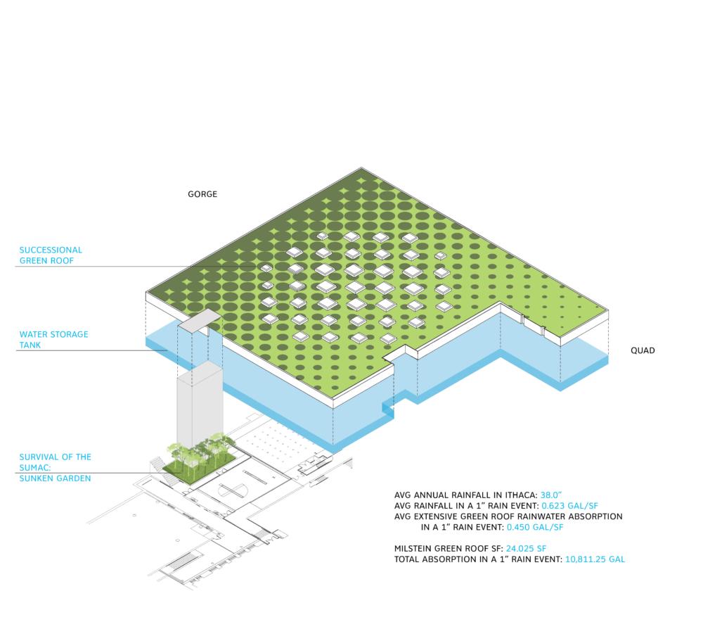 green-roof-stormwater-diagram_EDIT
